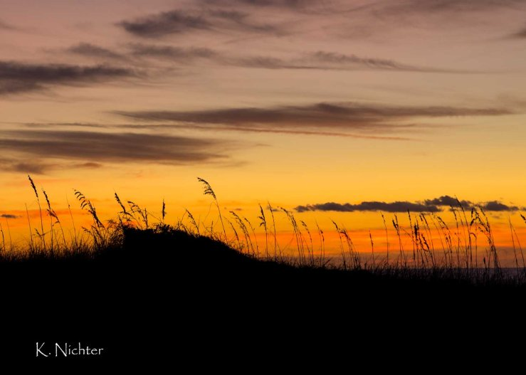 Sunrise behind the dune