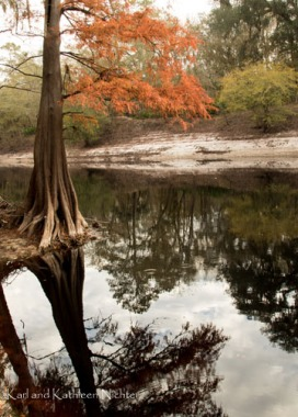 Fall on the Suwanee